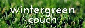 Wintergreen Couch