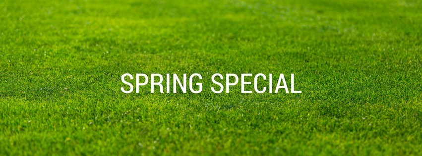 Now is the right time to fertilise + a spring special!