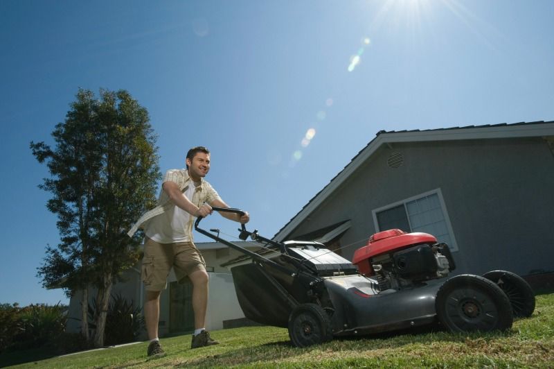 lawn care tips, mowing new lawn, new lawn care, turf sunshine coast, sunshine coast lawn care,