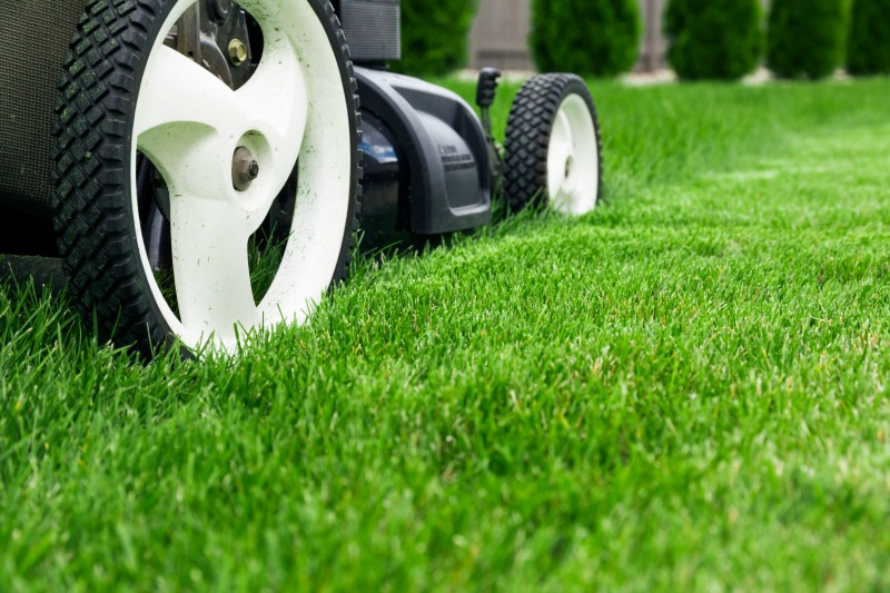 when to mow new lawn, new turf questions, turf sunshine coast