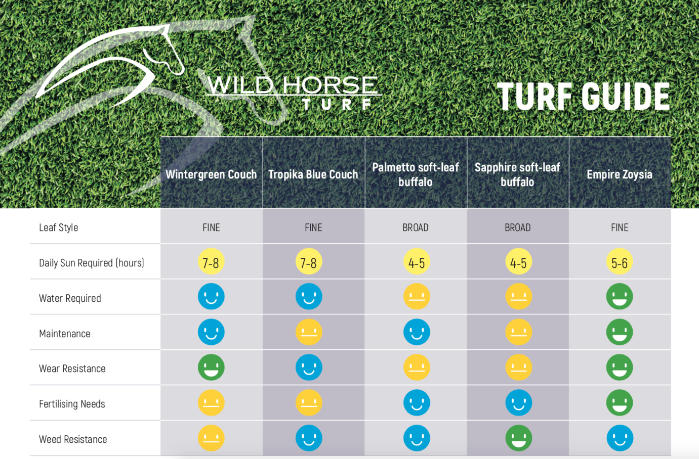 how to choose turf, turf sunshine coast, turf guide