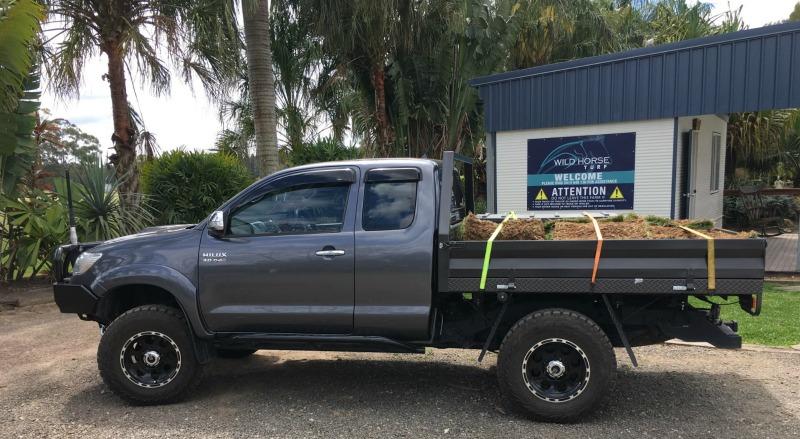 how to collect turf, turf sunshine coast